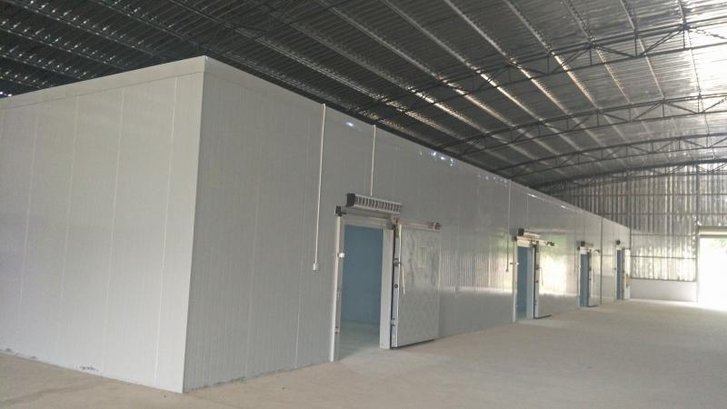 孙家场镇1千吨气调冷冻保鲜库对外出租、出售